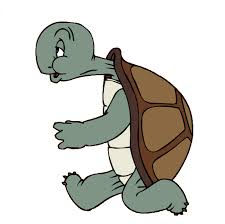 turtle 4