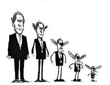 Bush clan